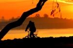 Marina Trail Biker