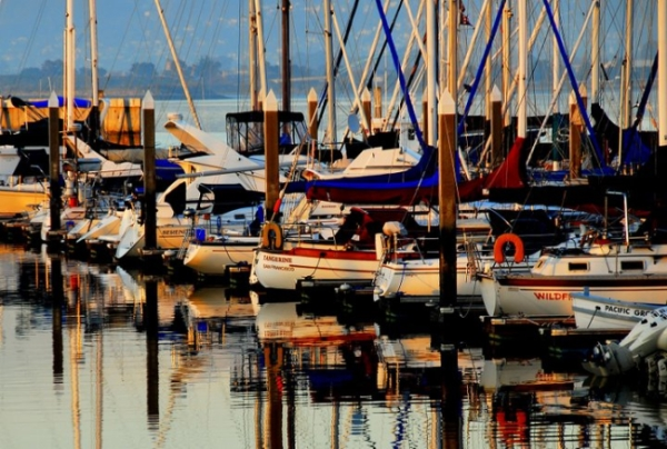 Marina Sailboats